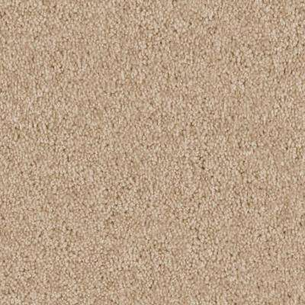 Carpet Sample - Team Builder - In Color Neutral 8 in. x 8 in.