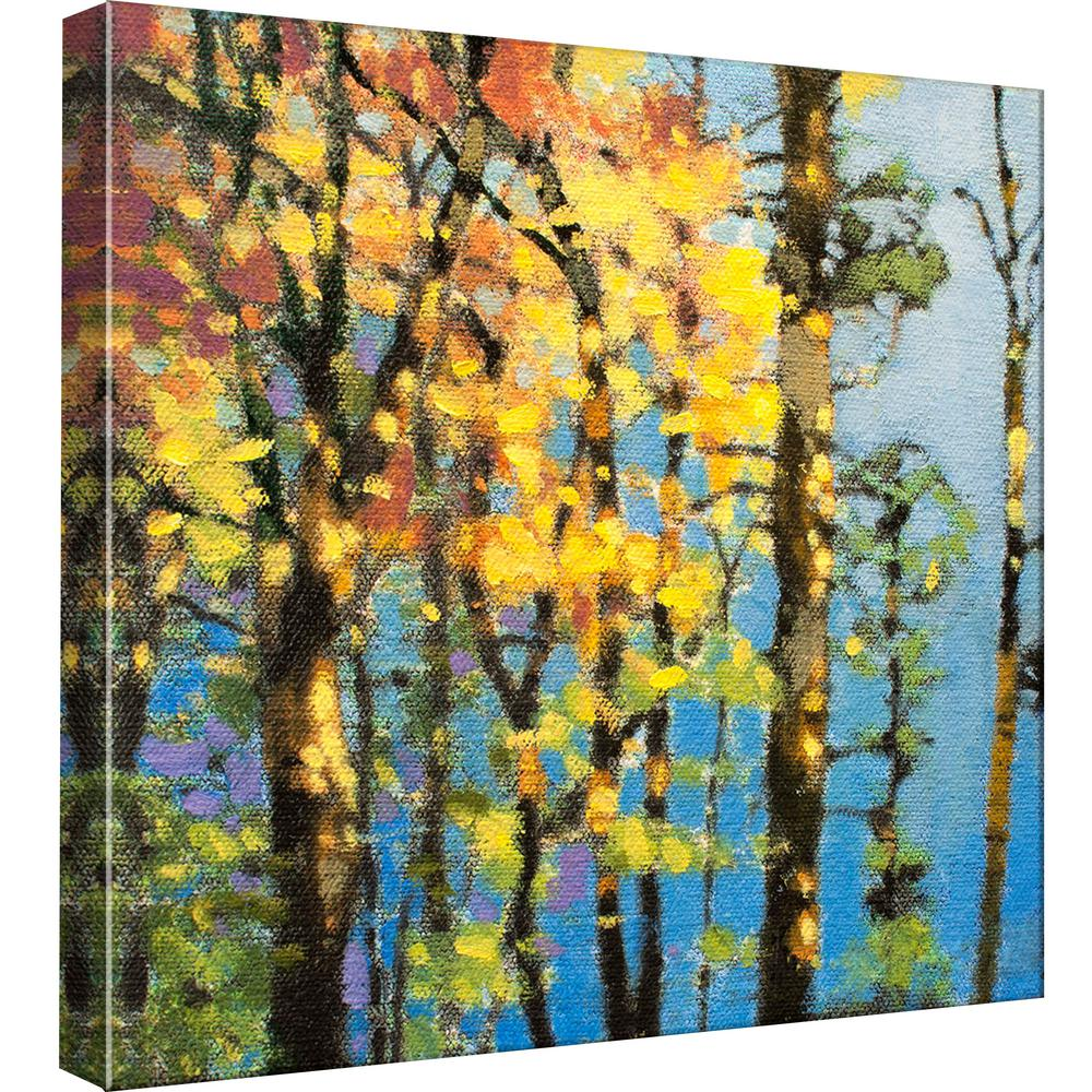 PTM Images 15.in x 15.in \'\'Autumn in the Olympics\'\' Printed Canvas ...
