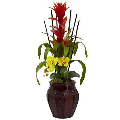 32 in. Bromeliad and Orchid Combo with Planter in Yellow