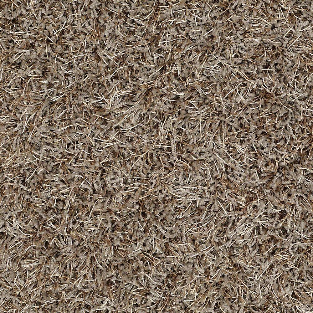 platinum plus carpet sample royal step in color arctic mist 8 in x 8 insh367779 the home depot