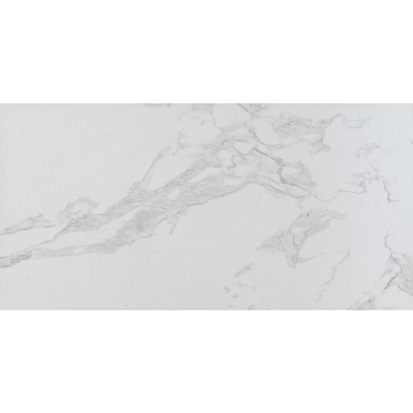 Praia Carrara 12 in. x 24 in. Polished Porcelain Floor and Wall Tile ( 16 sq. Ft. / case )