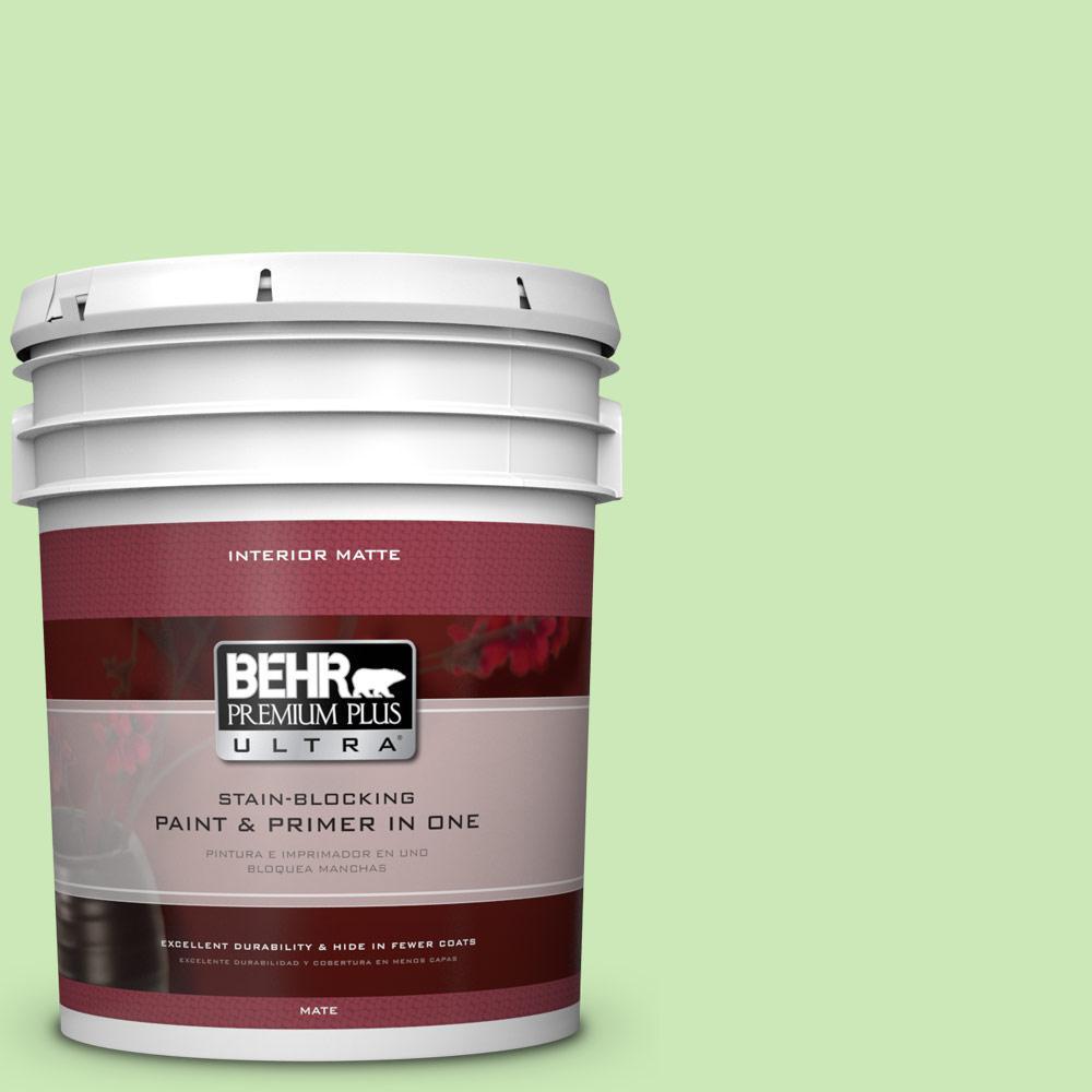 BEHR Premium Plus Ultra 5 gal. #430A-3 Fairway Mist Flat/Matte Interior Paint