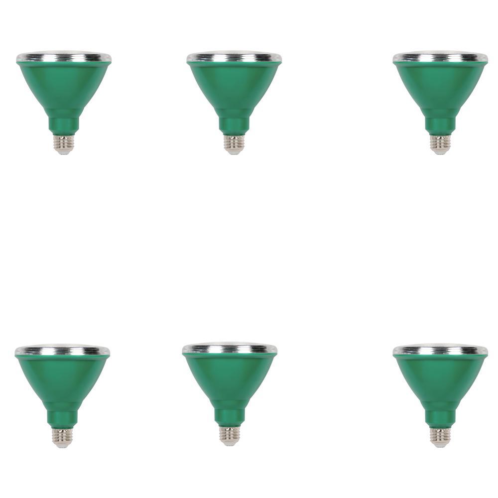 100W Equivalent Green PAR38 LED Weatherproof Flood Light Bulb (6-Pack)