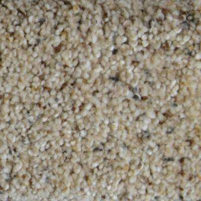 Carpet Sample - Galore II - Color West Palm Texture 8 in. x 8 in.