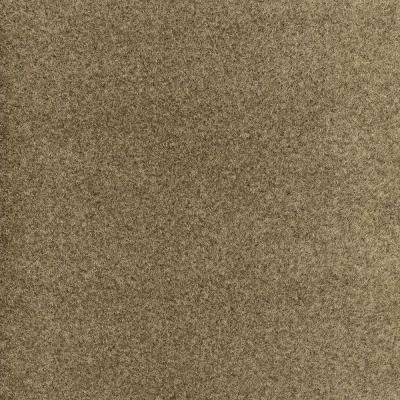 Dilour - Color Bark Texture 18 in. x 18 in. Carpet Tile (12 Tiles/Case)