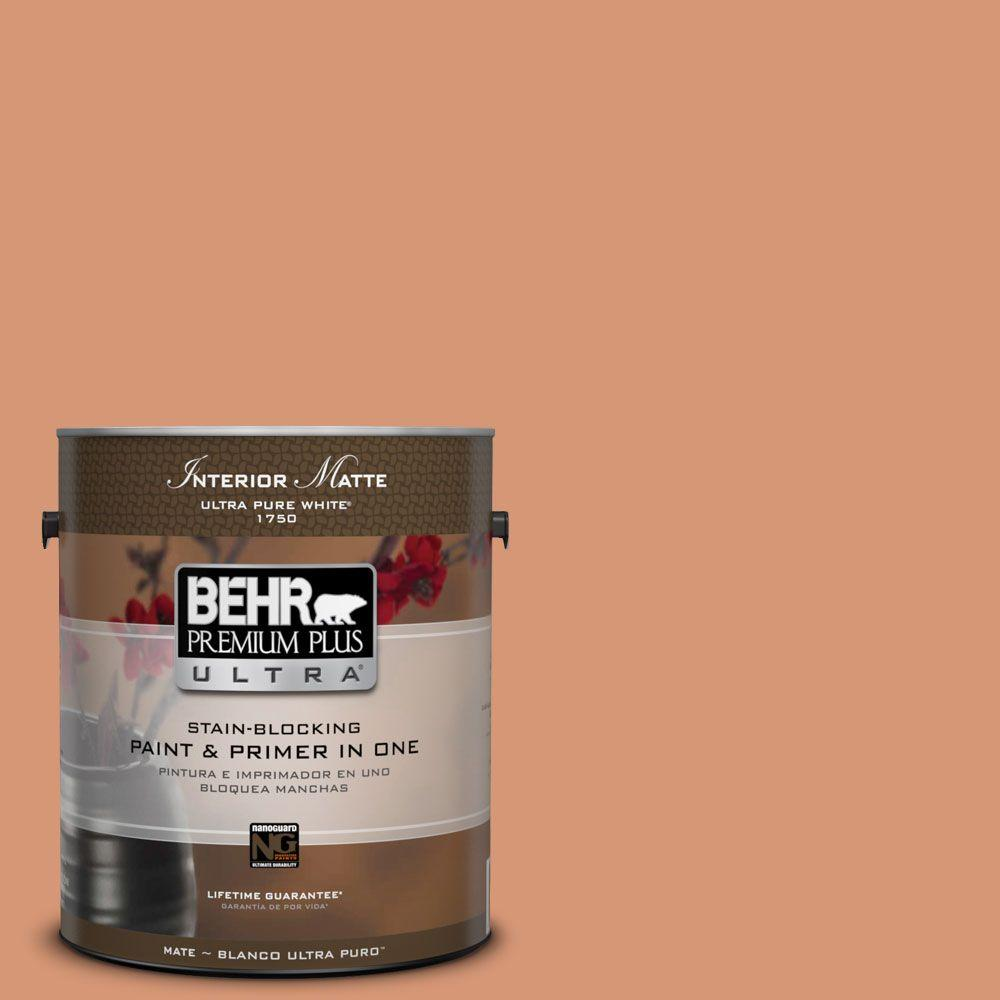 1 gal. #M210-5 Candied Yams Matte Interior Paint