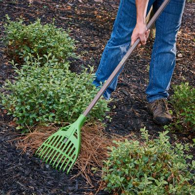 Collector 8 in. Poly Shrub Rake