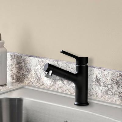 Black Single-Handle Faucet Pull-Out Sprayer Kitchen Faucet