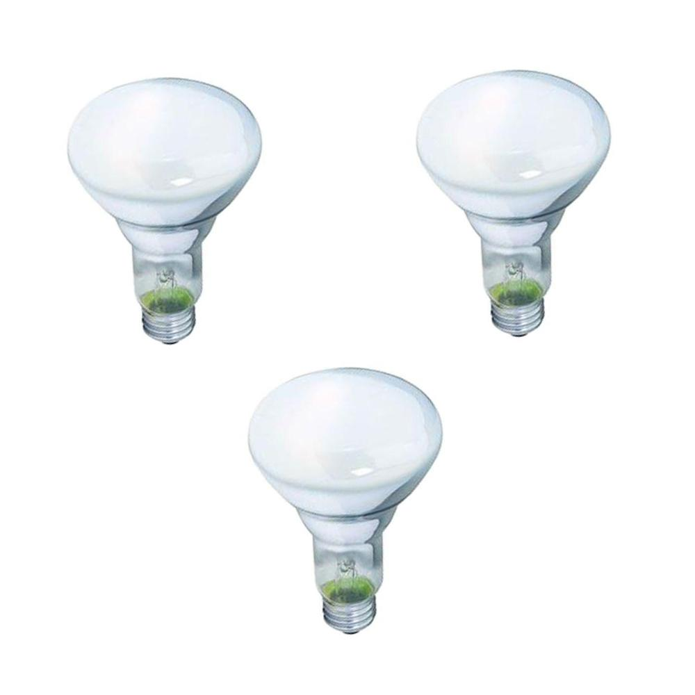 Philips 65-Watt BR30 Incandescent DuraMax Dimmable Flood Light Bulb (3-Pack)