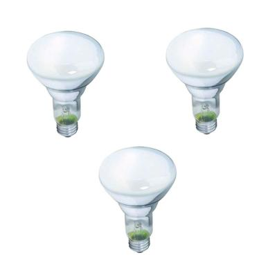 65-Watt BR30 Incandescent DuraMax Dimmable Flood Light Bulb (3-Pack)