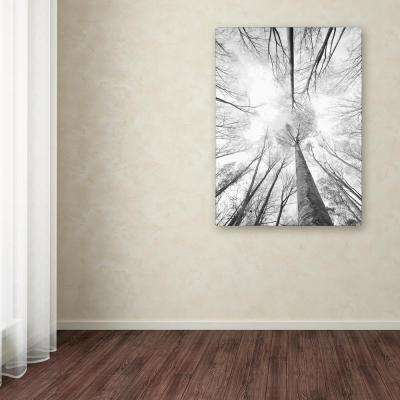 """47 in. x 30 in. """"Recall the Days"""" by Philippe Sainte-Laudy Printed Canvas Wall Art"""