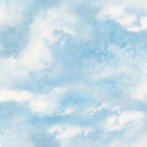 Graham Brown Blue And White Cloud 9 Wallpaper 51 058 The Home Depot