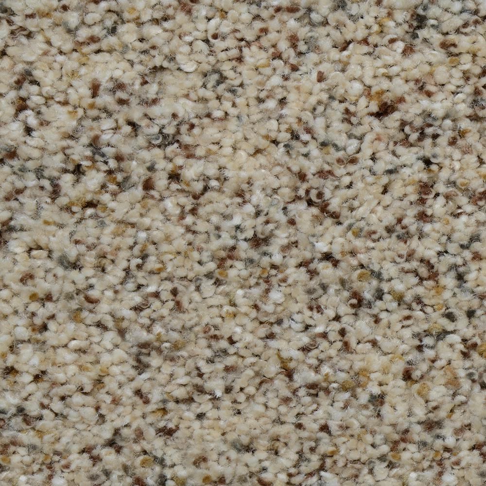 Carpet Sample - Beach Club II - Color Winfield Texture 8 in. x 8 in.