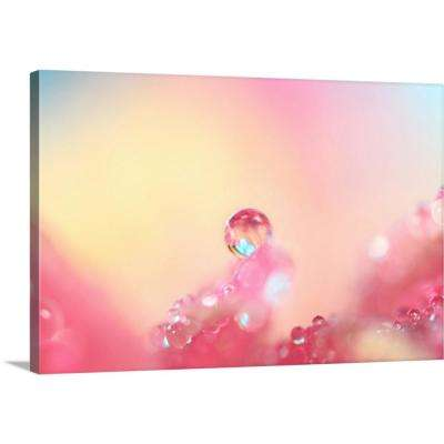 """Candy Pink"" by  Sharon Johnstone Canvas Wall Art"