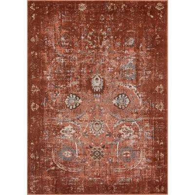 Kensington Goa Copper 7 ft. 10 in. x 10 ft. 6 in. Modern Oriental Overdyed Area Rug