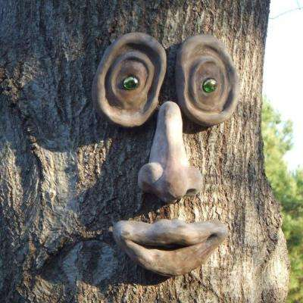 Oakley Tree Face
