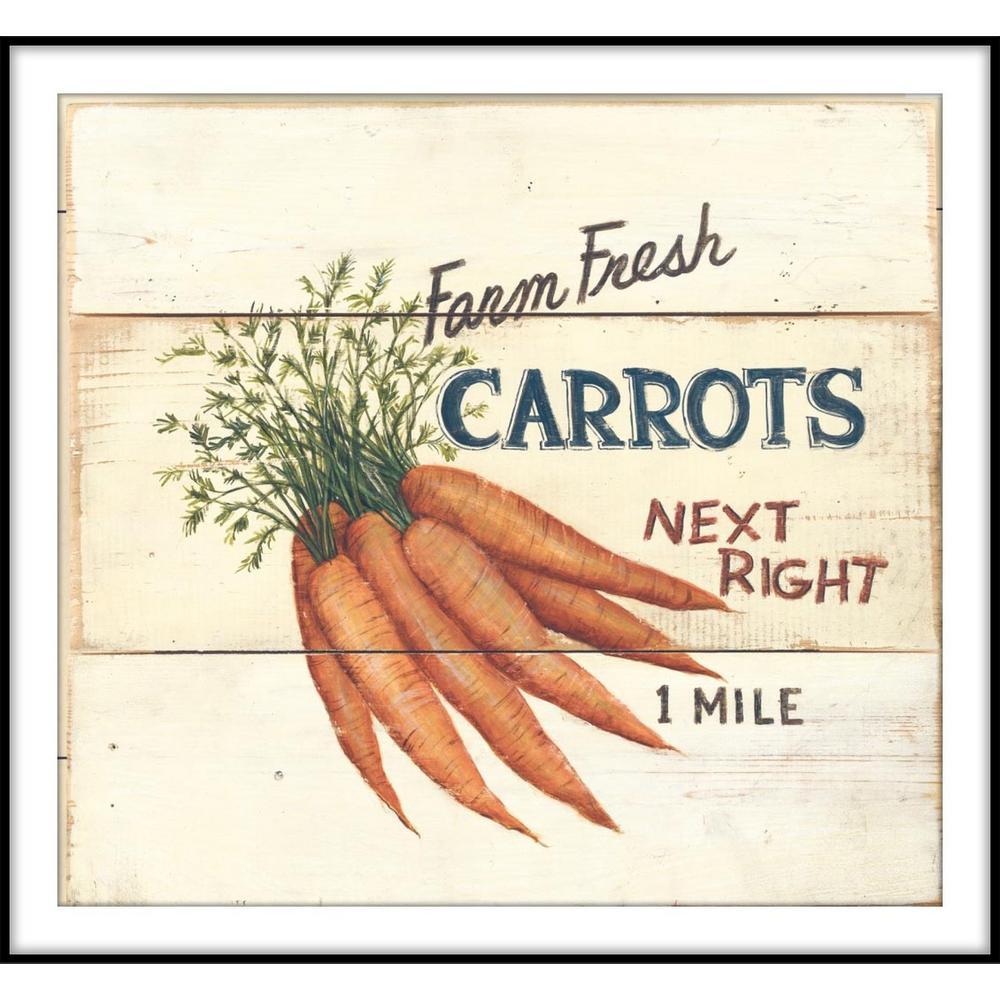 9.75 in.x11.75 in. ''Farm Fresh Carrots'' Framed Wall Art