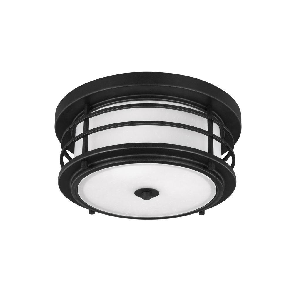 Sauganash 2-Light Black Ceiling Light