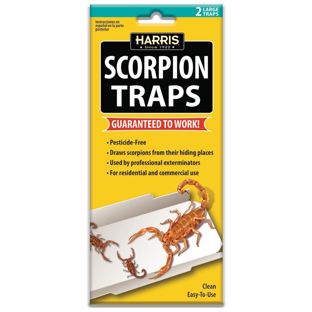 Scorpion Glue Trap (2-Pack)