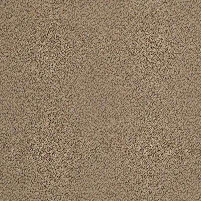 Carpet Sample - Braidley - In Color Inspiring 8 in. x 8 in.