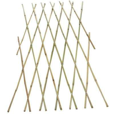 4 ft. x 6 ft. Bamboo Fence