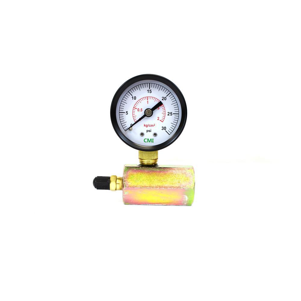0 - 30 psi 2 in. Dial Gas 3/4 in. Brass FNPT Test Gauge (2-Pack)
