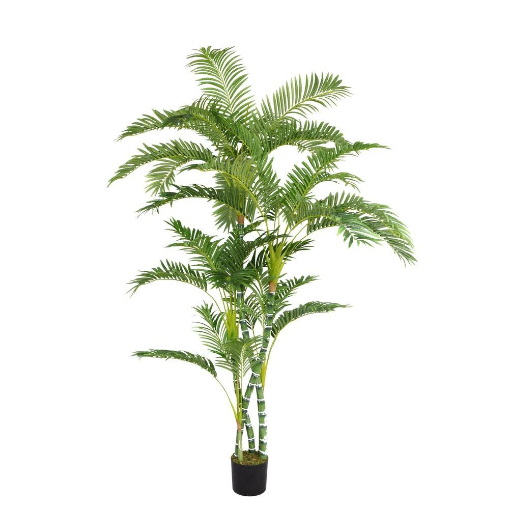 Laura Ashley 52 in. x 52 in. x 72 in. H Palm Tree, Black