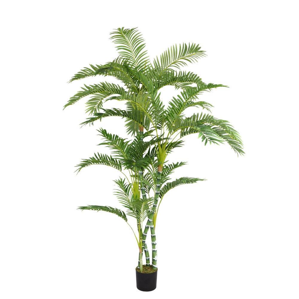 Laura Ashley 52 in. x 52 in. x 72 in. H Palm Tree, Blacks