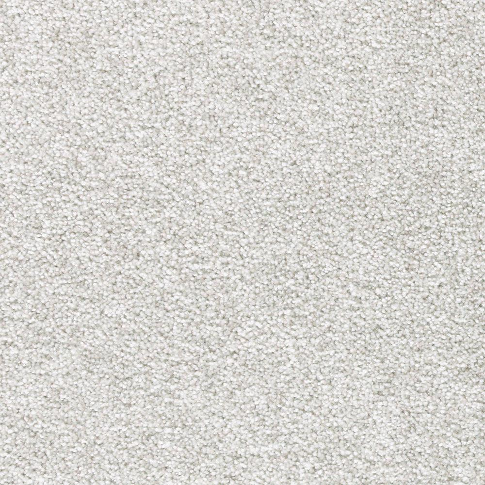 LifeProof Phenomenal II - Color Ancestral Texture 12 ft. Carpet