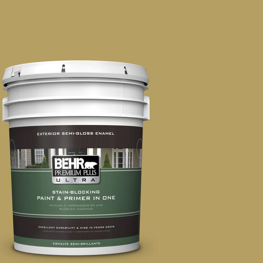 BEHR Premium Plus Ultra Home Decorators Collection 5-gal. #hdc-CL-19 Apple Wine Semi-Gloss Enamel Exterior Paint, Greens
