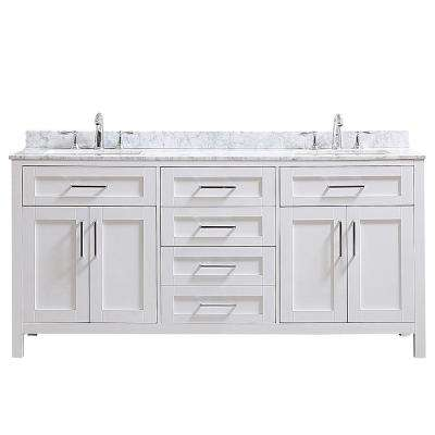 Riverdale 72 in. W x 21 in. D Vanity in White with Marble Vanity Top in White with White Sink