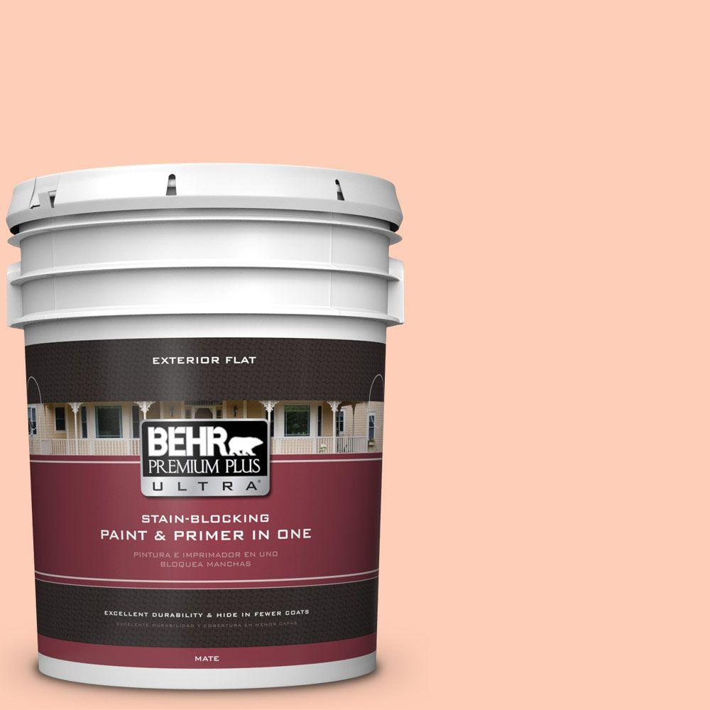 5-gal. #230A-3 Apricot Lily Flat Exterior Paint