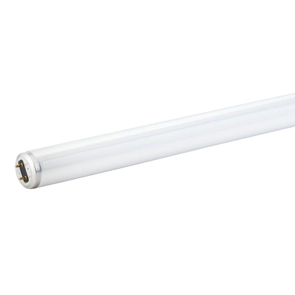 8 Ft 2 Lamp Fluorescent Strip Light White No Ssf2964wp 8ft: T8 Fluorescent Light Bulbs Home Depot