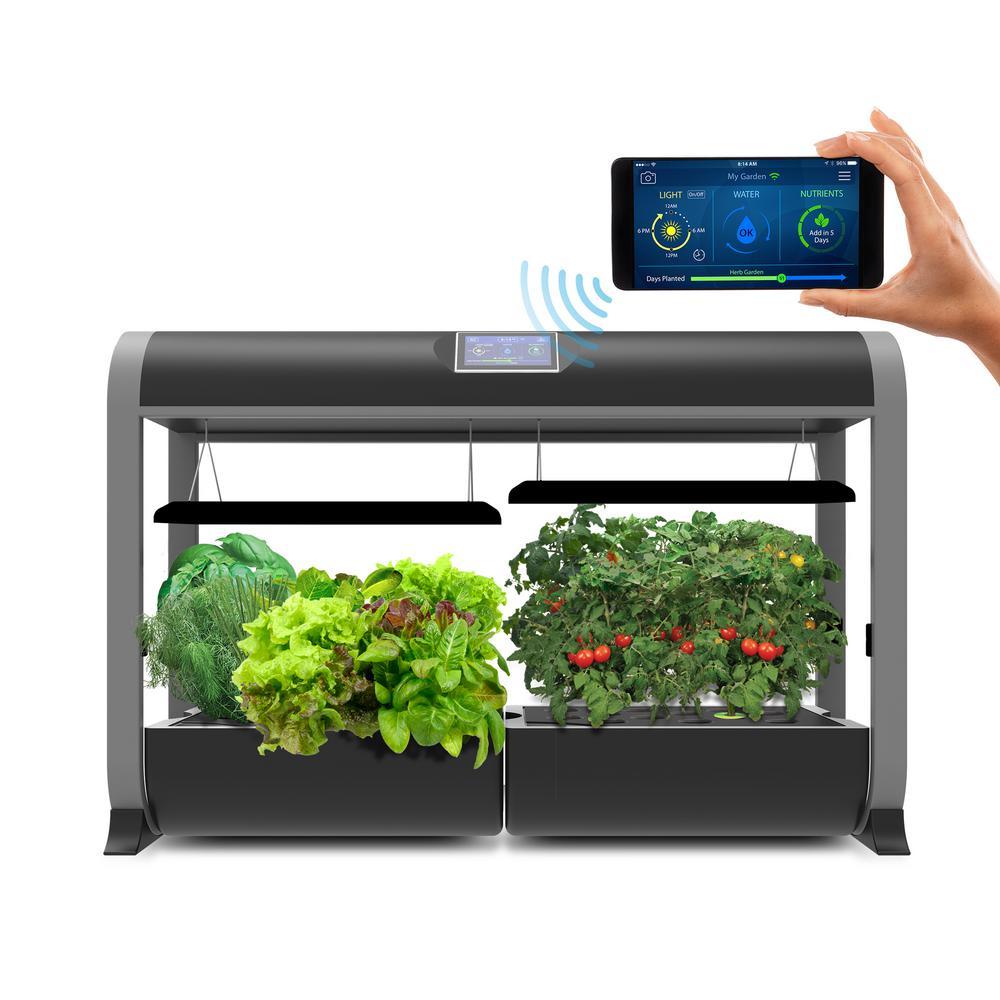 AeroGarden Farm Hydroponic Garden Kit for Indoor Growing in Black