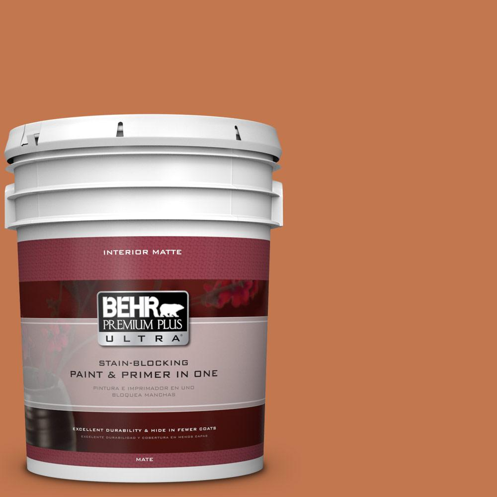 5 gal. #240D-6 Chivalry Copper Flat/Matte Interior Paint