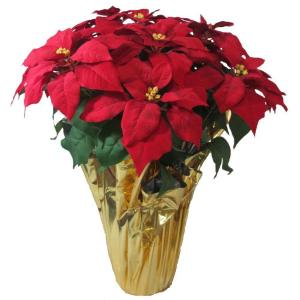 home accents holiday christmas 28 in xlarge red silk poinsettia in foil the home depot