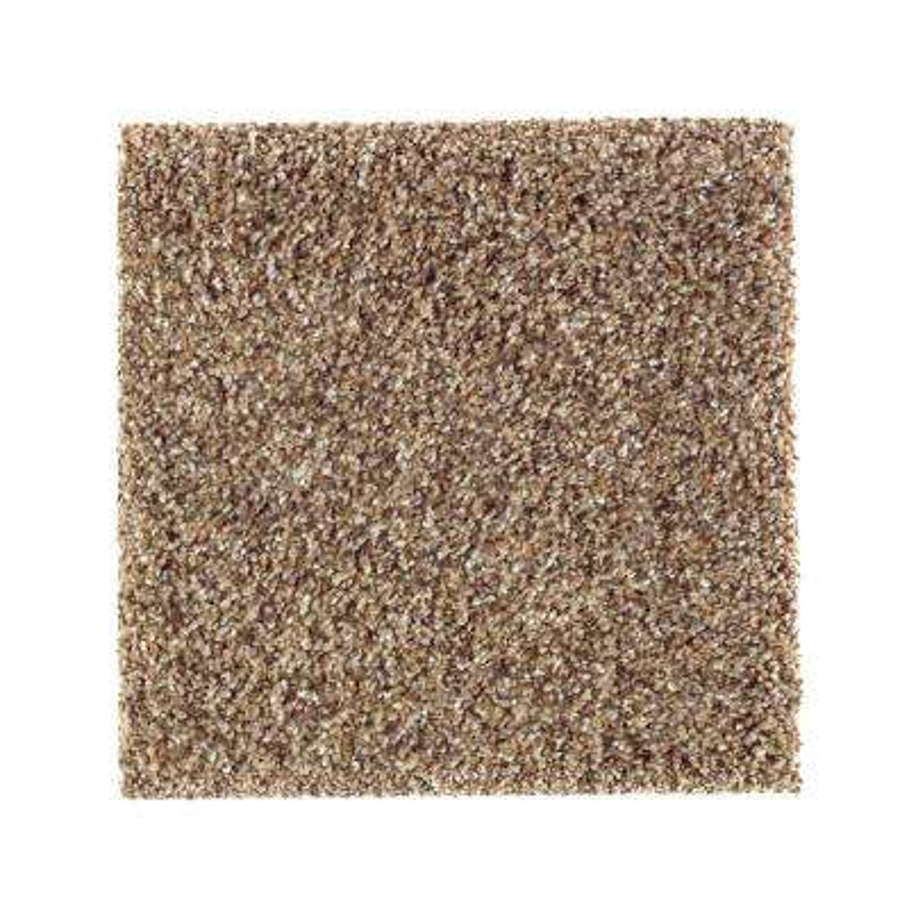 Carpet Sample - Sachet II - Color Eternity Texture 8 in. x 8 in.