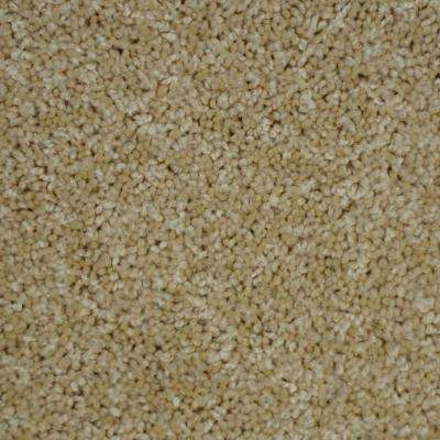 Carpet Sample-Thoroughbred ll -Color Palomino Texture 8 in. x 8 in.