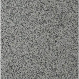 Polished Granite Floor And Wall Tile (