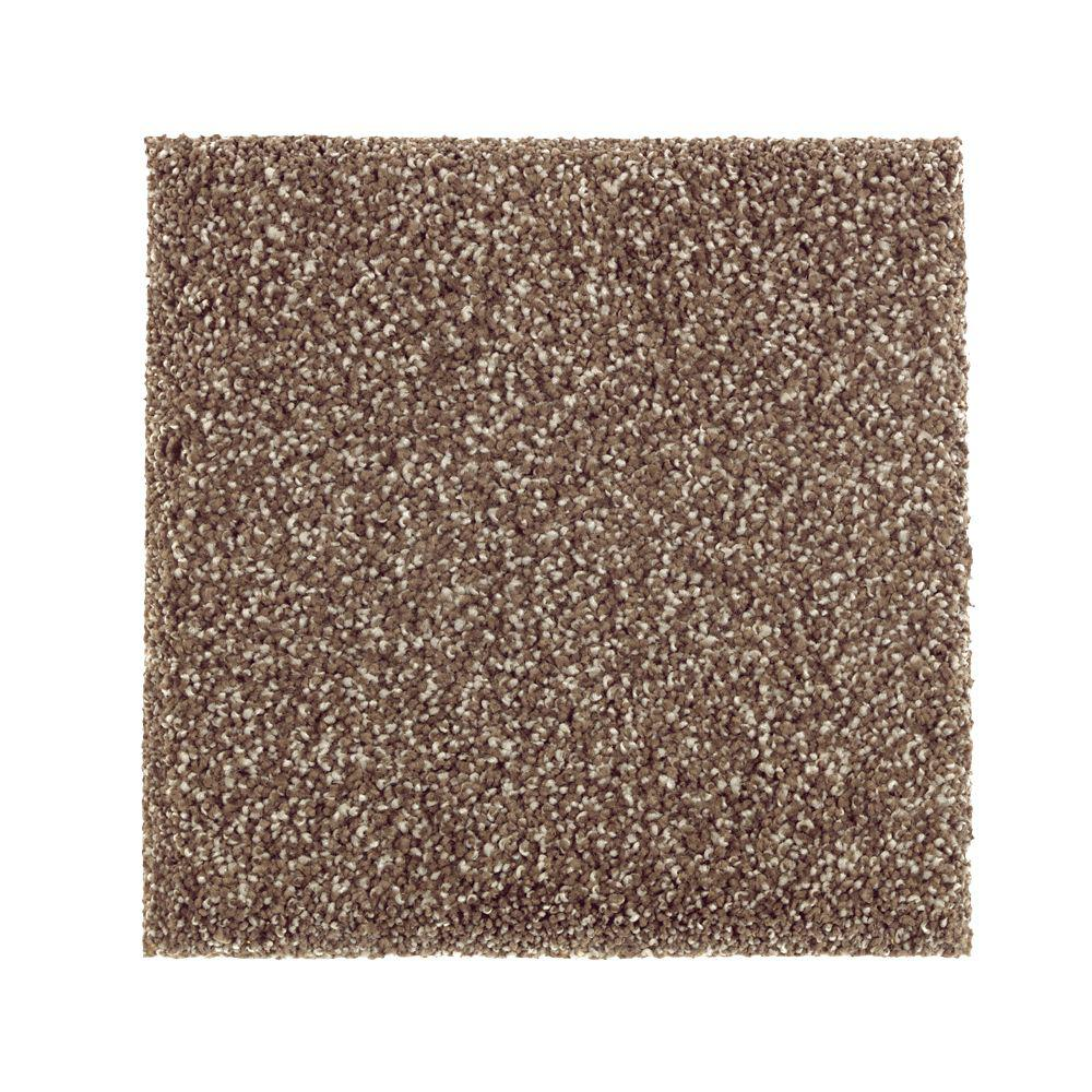 Petproof carpet sample whirlwind i color leather tone for Pet resistant carpet
