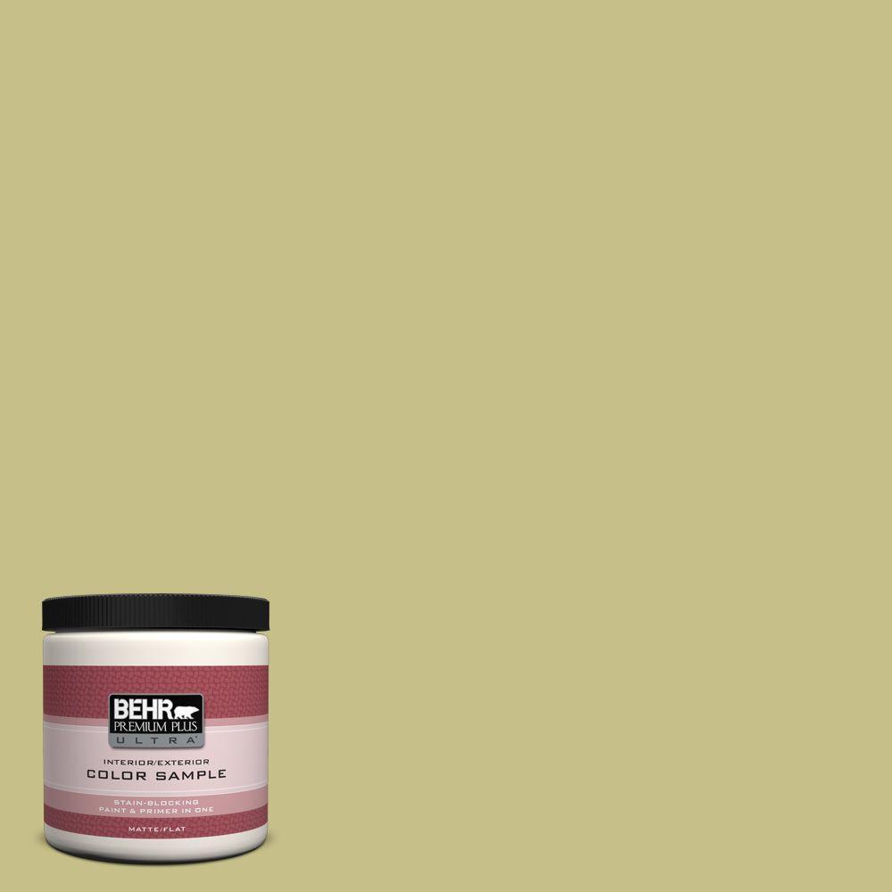 BEHR Premium Plus Ultra 8 oz. #PPU9-11 Wheat Grass Interior/Exterior Paint Sample