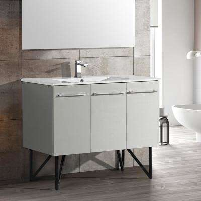 Annecy 48 in. Single, 2-Door, 1 Drawer Bathroom Vanity in Gray with White Basin