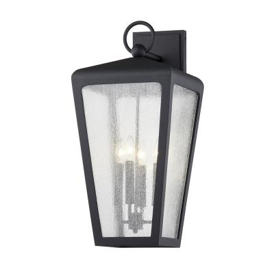 Mariden Textured Black 4-Light Wall Sconce with Clear Seeded Glass Shade