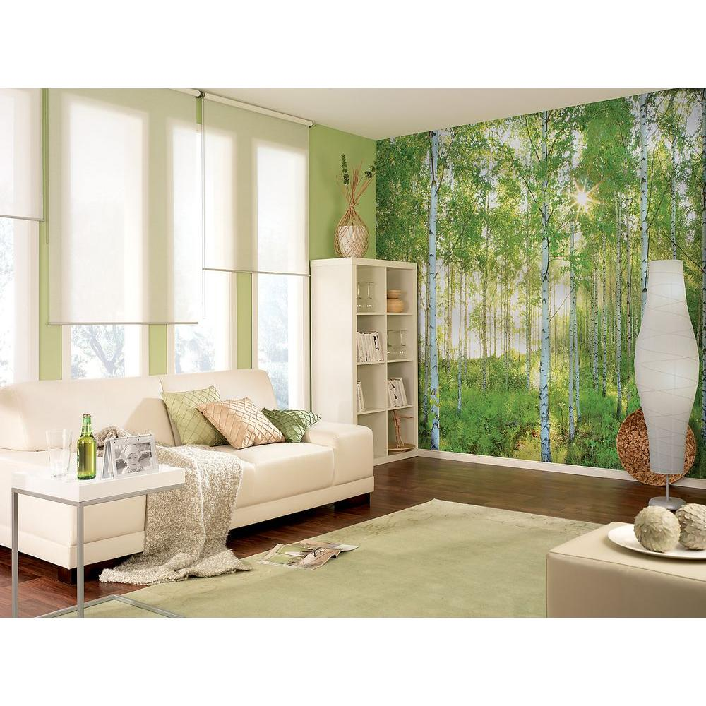 Wall Mural Trees Birch Tree wall murals Dezign With a ZStartonight