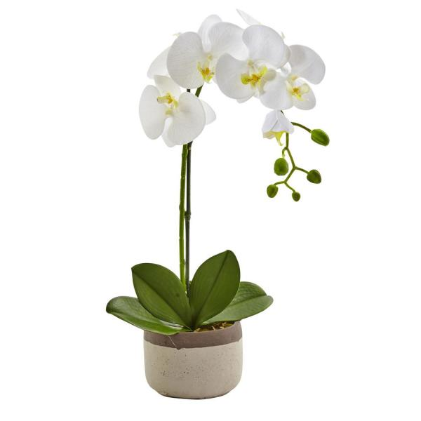 Nearly Natural 19 in. Phalaenopsis Orchid in Ceramic Pot 4569