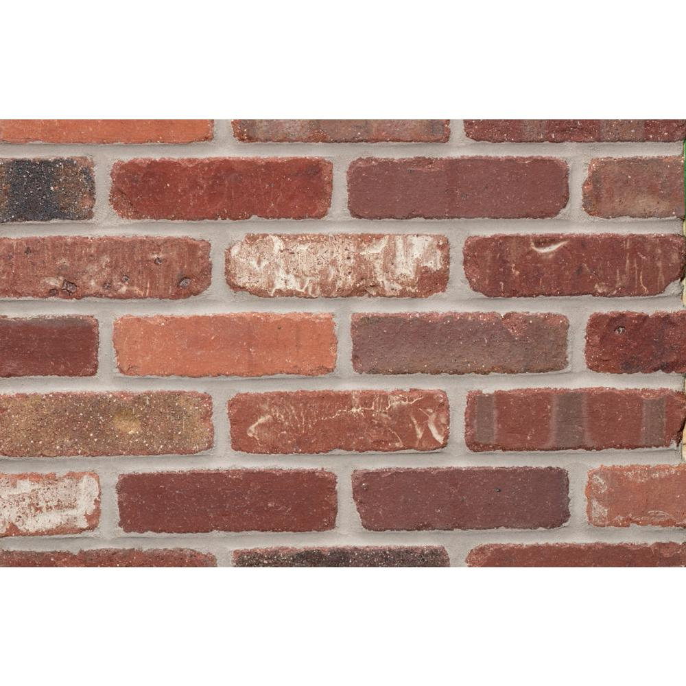 Providence bighorn cut kiln fired thin brick tumbled for Fired tiles