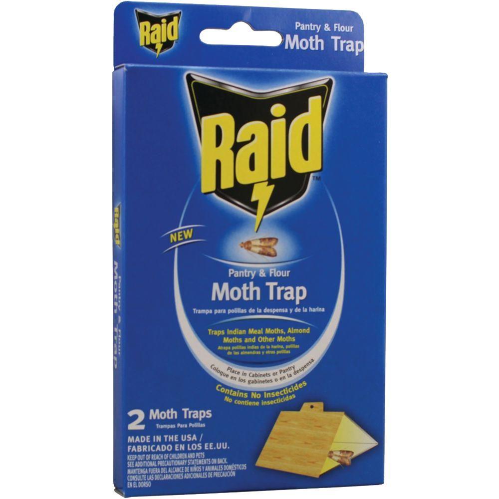 Raid Pantry Moth Trap 12PackPMOTHRAIDH The Home Depot