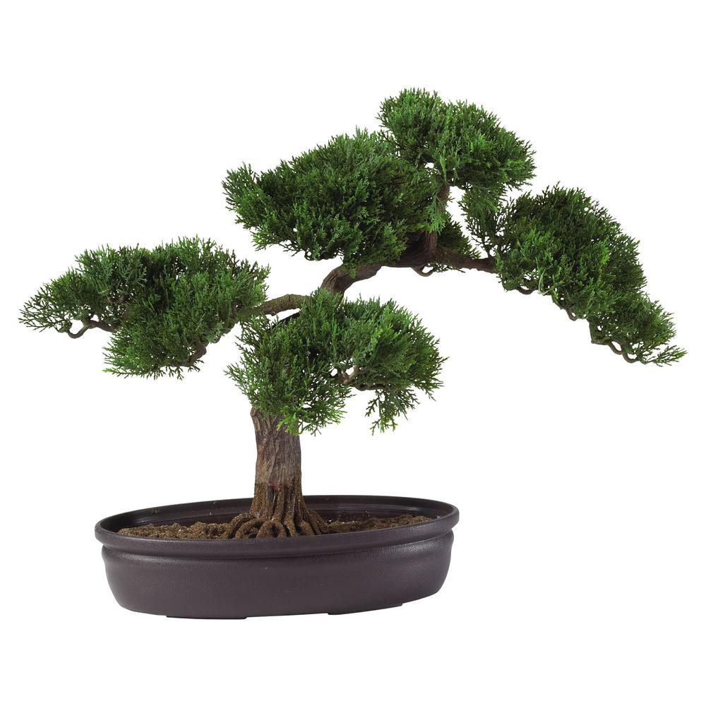 Nearly Natural 16 in. Cedar Bonsai Silk Plant At 16 in. tall, this Cedar bonsai adds a soft touch of elegance to any room. Both the delicately crafted leaf pattern and the carefully designed branches make this tree a popular gift item for any occasion. Encased in a circular container filled with artificial soil, this bonsai tree provides a sense of peace and tranquility to your home or office area.