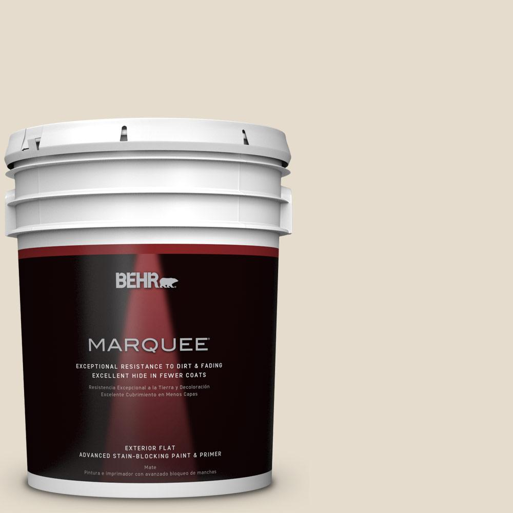 Home Decorators Collection 5-gal. #HDC-CT-05 Pale Palomino Flat Exterior Paint