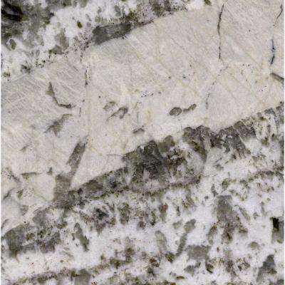 3 in. x 3 in. Granite Countertop Sample in Adonis White